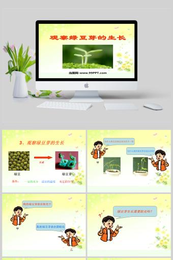 观察绿豆芽的生长科学课件PPT亚博体育主页