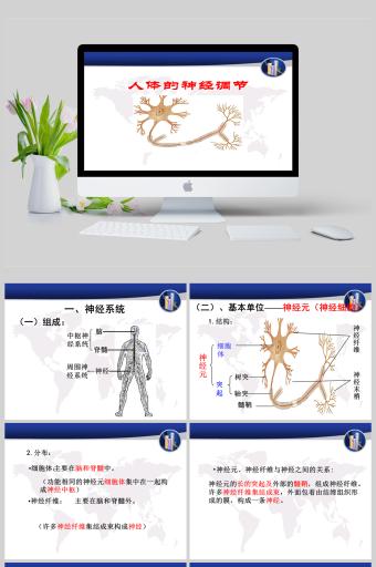 人体的神经调节七年级生物课件PPT亚博体育主页